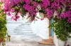 A typical greek restaurant on a sunny day in Narrow white street and pink flowers in Patmos.