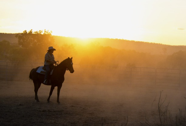 Lonely stockman at sunset.