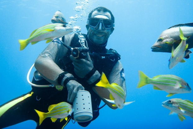 Frolicking with stingrays and harmless black-tipped reef sharks is all in a day's play in many of the islands. Boat ...