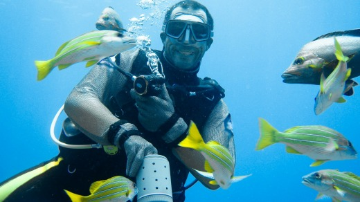 A dive instructor feeds fish.