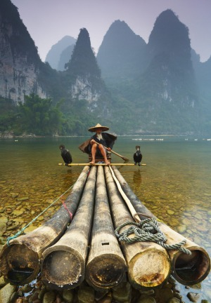 Cormorant Fisherman on the Li River.