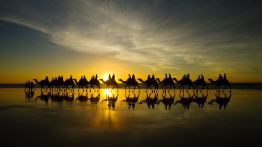 A camel ride in Broome.