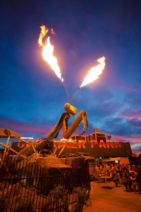 Downtown's Container Park praying mantis lights up at night.