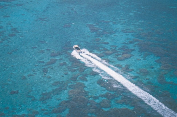 Houtman Abrolhos Islands: A heli-flight over the reefs is splendid; otherwise take to snorkelling for an underwater view ...