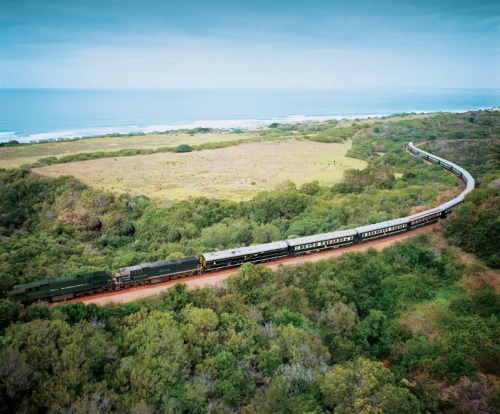 The Pride of Africa is the self-styled 'most luxurious train in the world'.