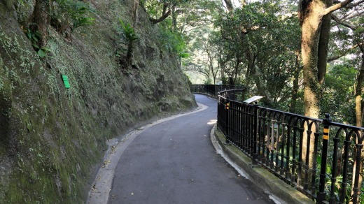 Rather than take the tram, hike up the trail to to the top of Victoria Peak.