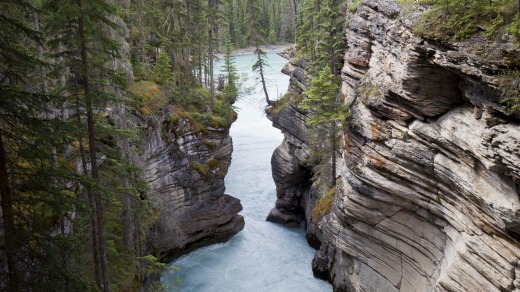 A gorge by the Athabasca Falls in Jasper National Park.