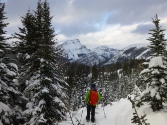 I discovered there is so much more to snow than skiing! A leisurely snow shoe hike through the Canadian Rockies allowed ...