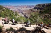 HOOF IT: Riding a mule has been a traditional way of accessing the Grand Canyon since tourism began in the area; trips ...