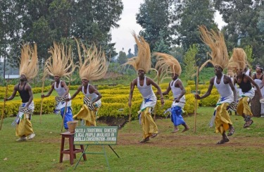 Rwanda, July, 2014. Up at dawn to go visit the mountain gorillas, we all assembled at the Volcanoes National Park office, where we were to be assigned gorilla families to visit. While waiting, we were entertained by this energetic troop of traditional Rwandan dancers.