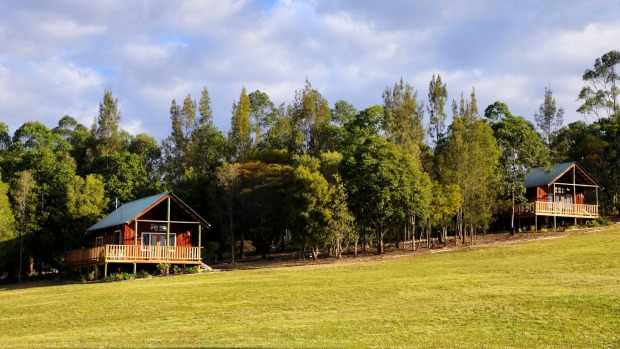 With plenty of space to roam, Mansfield on Manning's guestcan choose between two recently renovated cabins and a vintage ...