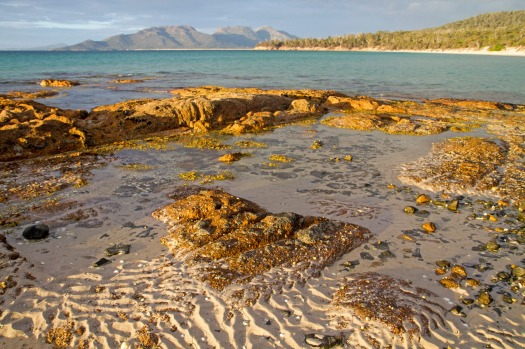 Cooks Beach, Tasmania: See way beyond Wineglass Bay by walking past the famed strand to this equally beautiful beach ...