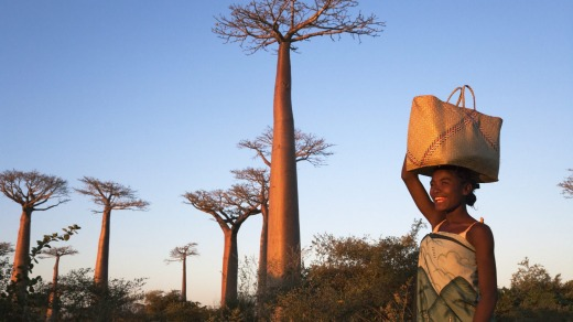 A local woman with a baobab tree in Madagascar.