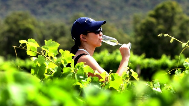Sampling the produce in the Hunter Valley.