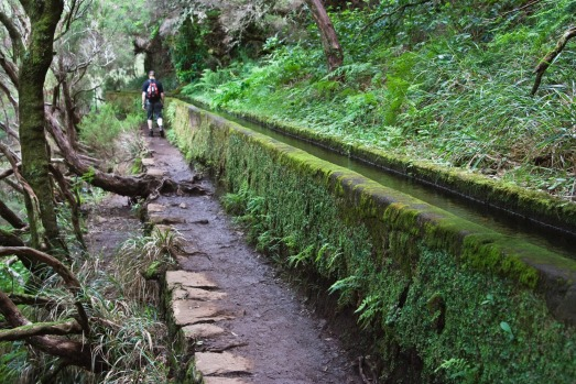 LEVADA WALKS, MADEIRA: OK, perhaps Funchal, capital of Madeira, isn't one of the world's greatest cities. But when it ...