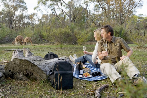 The Louise: Breakfast with the Kangaroos delivers exactly what it promises. In a pretty clearing amid dense bushland, ...