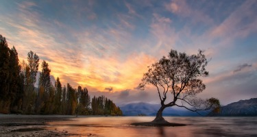 This is the lone tree at Wanaka taken at the crack of dawn in early April. Wanaka must be one of the most beautiful ...