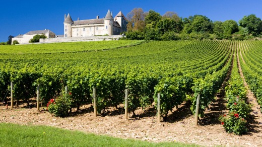 The beautiful Burgundy landscape.