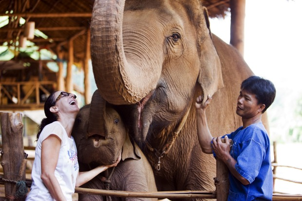 Want to practice yoga in the morning and hang out with elephants in the afternoon? At Anantara Golden Triangle Elephant ...