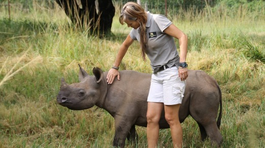 Meeting a young rhino.