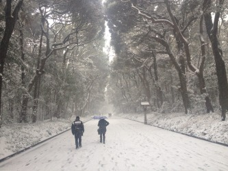 Taken on the path to Tokyo's Meiji shrine, amid the heaviest snowfall Japan has experienced in decades.