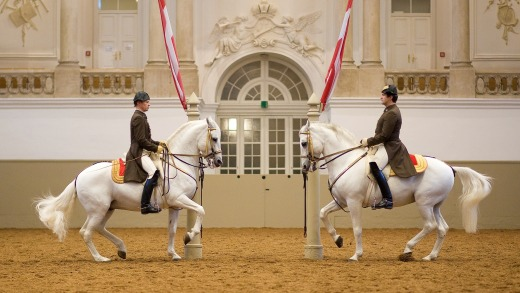 Spanish Riding School, Vienna, Austria.