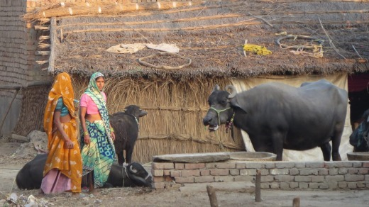 On the Mughal Heritage Walk in Agra, India: Villagers in Kacchpura.