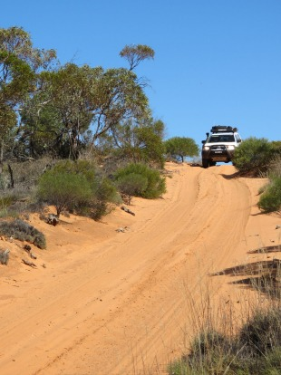 Googs Track: Ceduna to Coober Pedy: A fantastic short cut from the western top of the Eyre Peninsula to the ...