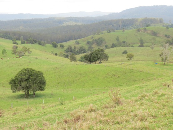 Lions Road: across the Border Ranges: Another fabulously scenic shortcut is the Lions Road, a privately maintained ...