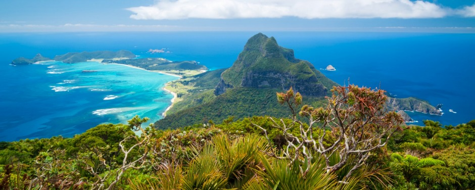 View from Mt Gower on Lord Howe Island.