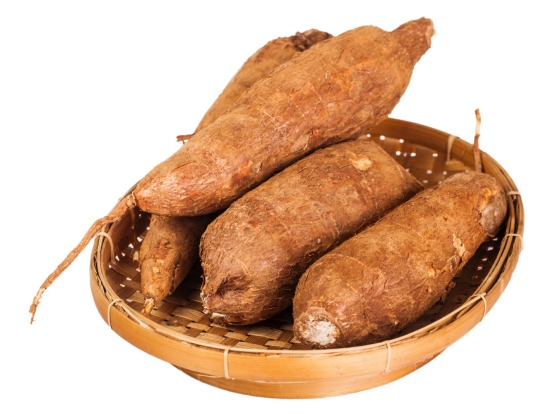Cassava: Eaten boiled, fried, steamed, baked, grilled or mashed, the cassava plant, a root vegetable in South America, ...