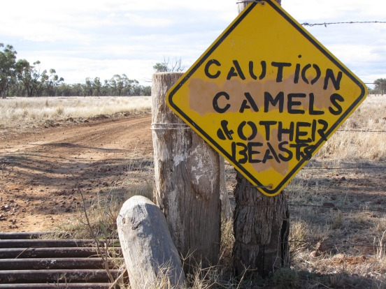 Charlotte Plains, Cunnamulla. One sign fits all animals great and small in Cunnamulla in outback Queensland – you can't ...