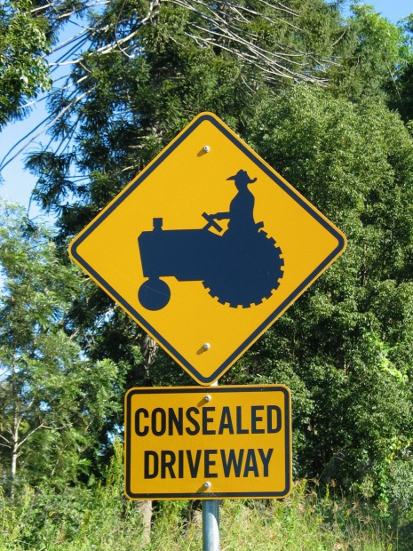 """'Consealed'. I'm not 100 one hundred per cent sure, but I think """"consealed"""" is some sort of fancy road surface they use ..."""