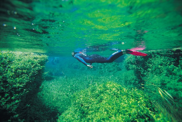 Piccaninnie Ponds, SA: This pristine lake near Mount Gambier is a well-kept secret among the dive fraternity, who ...