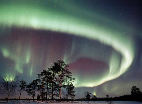Northern Lights over the Lapland in Finland.