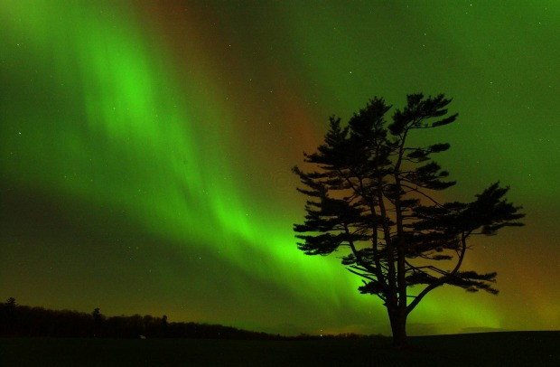 The aurora borealis lights up the sky above a field in the early morning in Kitchener Ontario, Canada. The Northern ...