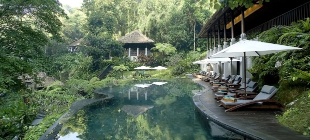 The pool at Maya Ubud.