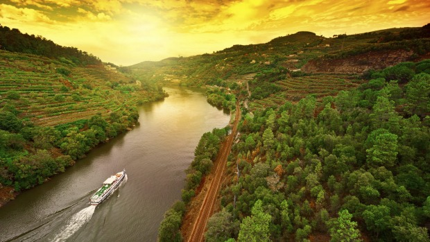 Vineyards in the Valley of the River Douro, Portugal.