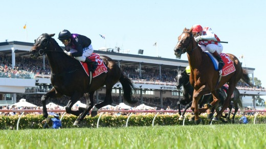 The 2013 Melbourne Cup won by Damien Oliver on Fiorente.