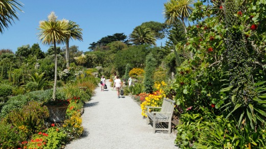 Tresco Abbey Gardens on the Isles of Scilly, Cornwall.