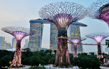 "Gardens by the Bay is one of my favourite parts of Singapore, and especially the evening ""Supertree Grove Garden ..."