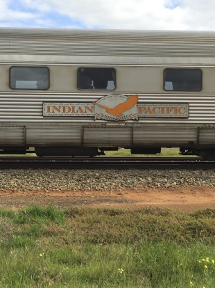 One of the carriages of the Indian Pacific train that runs between Sydney and Perth with its wedge-tail eagle symbol.