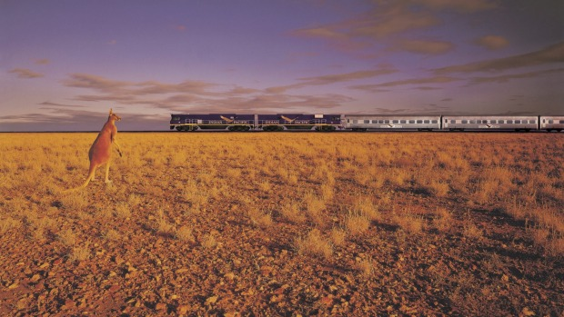 The Indian Pacific makes its way between Australia's eastern and western seaboards on its 4352-kilometre journey.