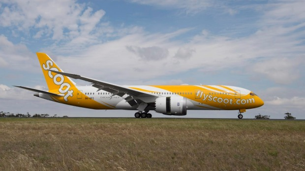 scoot airlines - photo #22