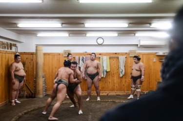 At the Arashio Sumo stable in Tokyo, you can stand in the street to watch training sessions through a window. It feels ...