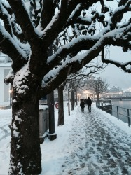It was 3 days after Christmas 2014. It was -7C and we'd just arrived in Lucerne, Switzerland. We'd spent 2 hours in a ...