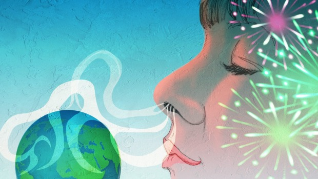 Aromas are incredibly powerful, and they can carry you around the world. <i>Illustration: Michael Mucci</i>