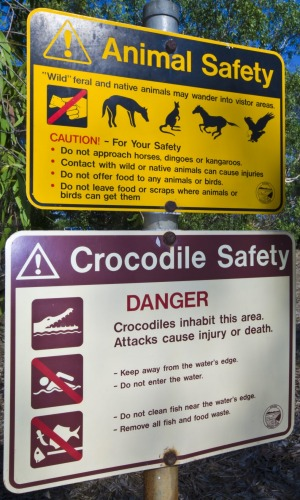 Graphic signs warn of Saltwater Crocodile and feral animal dangers.