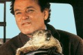 Bill Murray in Groundhog Day.           Groundhog day- movies- the list