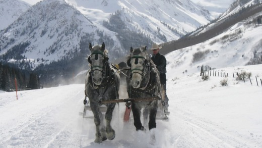 Take a horse-drawn sleigh ride to the Pine Creek Cookhouse.